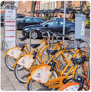 Cycling and bike rental