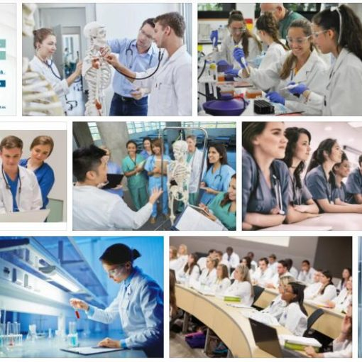 Study Health Sciences