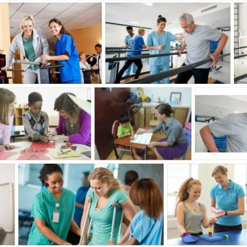 Study Occupational Therapy